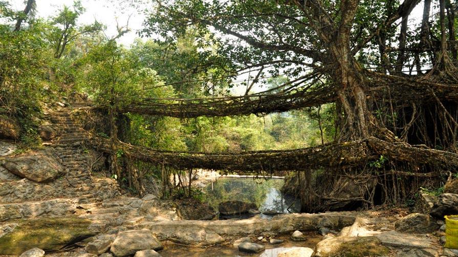 cherapunjee-bridges