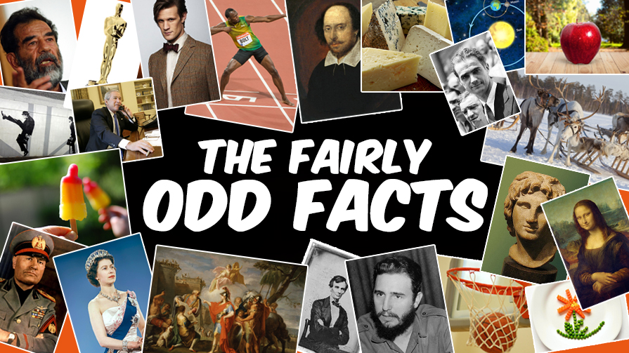odd facts 2