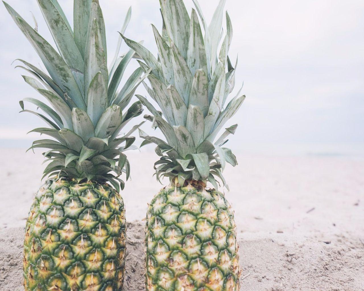 Pineapples 1
