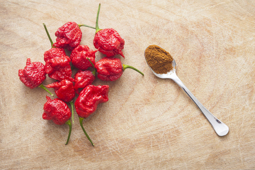 Carolina-Reaper-chilli-pepper
