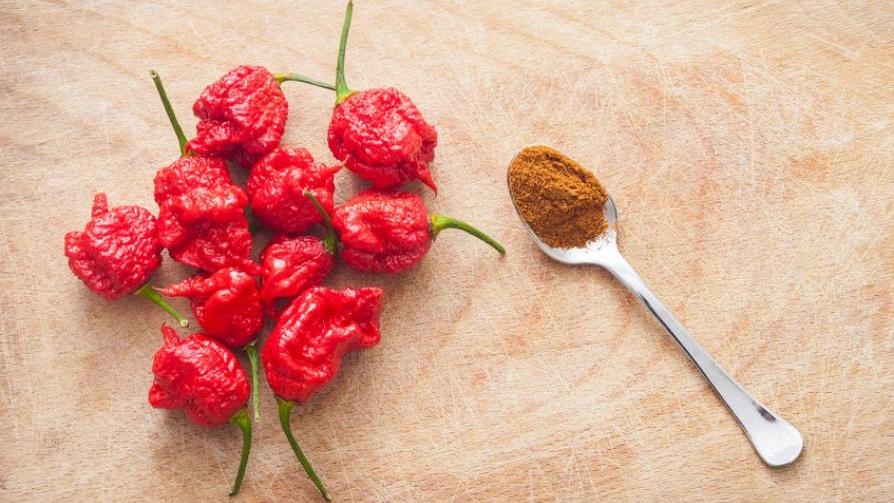 Carolina-Reaper-chilli-pepper