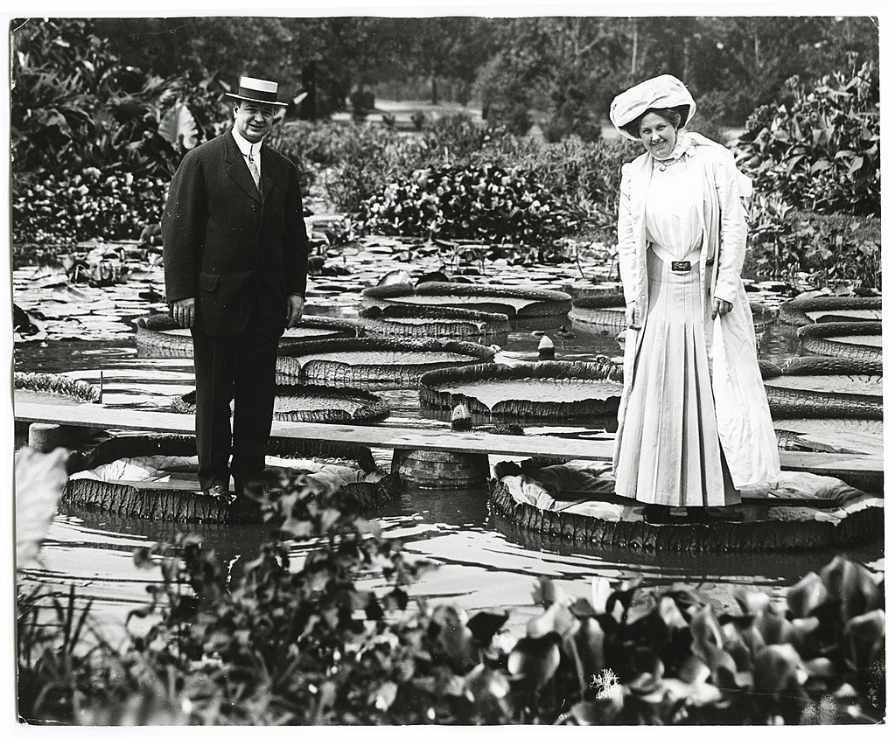 1024px-Tower_Grove_Park_Lily_Pond._Man_and_woman_standing_on_Lily_Pads._(detail_of_SNDC_2-07-0032a)