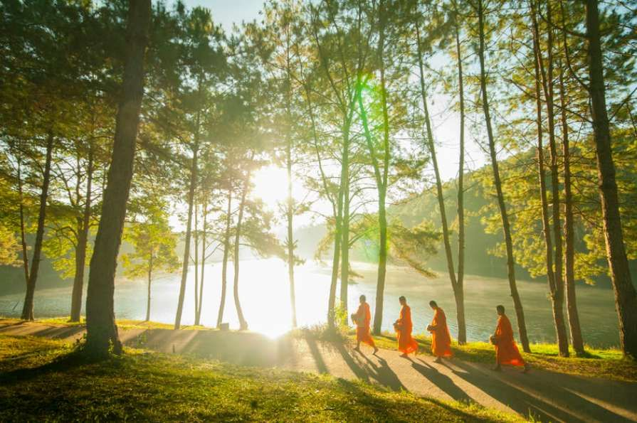 Thai_monks_need_healthier_food_and_more_exercise
