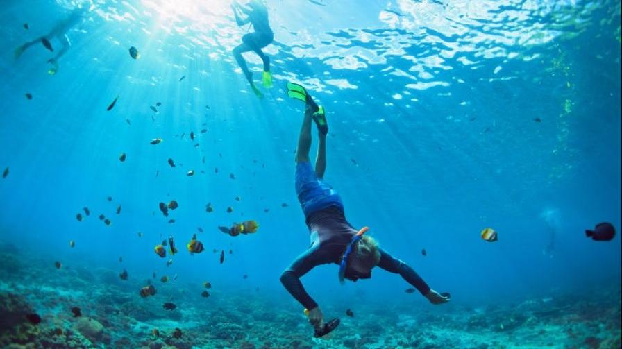 Sunscreen-damaging-coral-reefs