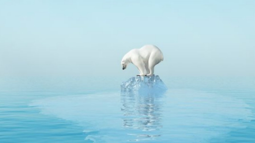 Polar_ice_is_shrinking_due_to_global_warming