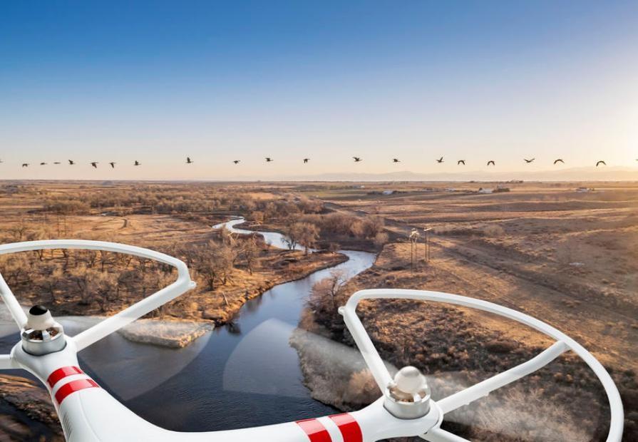 drones_to_prevent_bird_strikes