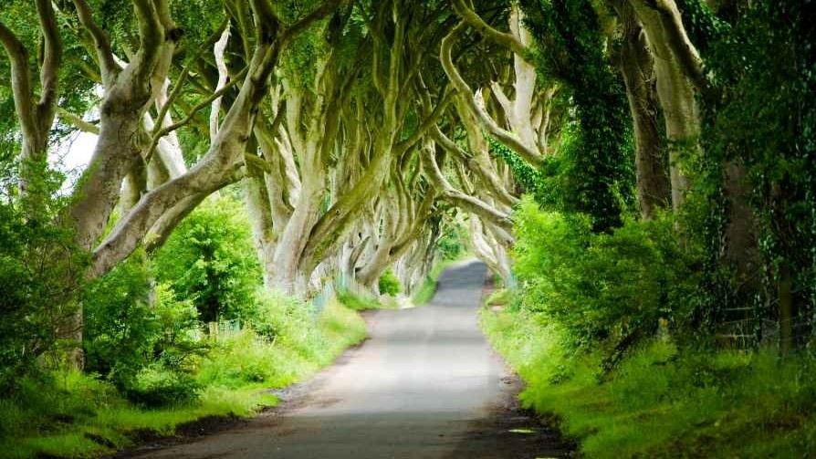 Filming is underway on the new Game of Thrones prequel series in Northern Ireland